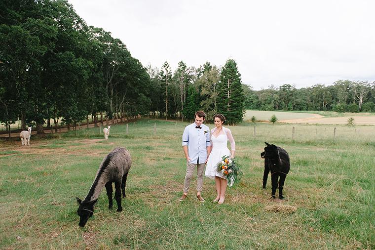 Blackwattle Farm-145