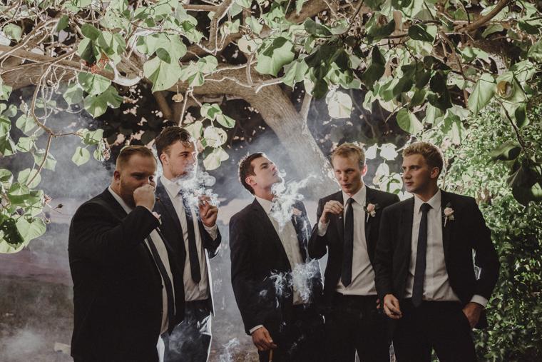 Twin Waters Novotel Wedding _ The Bride's Tree _ EmmaNayler