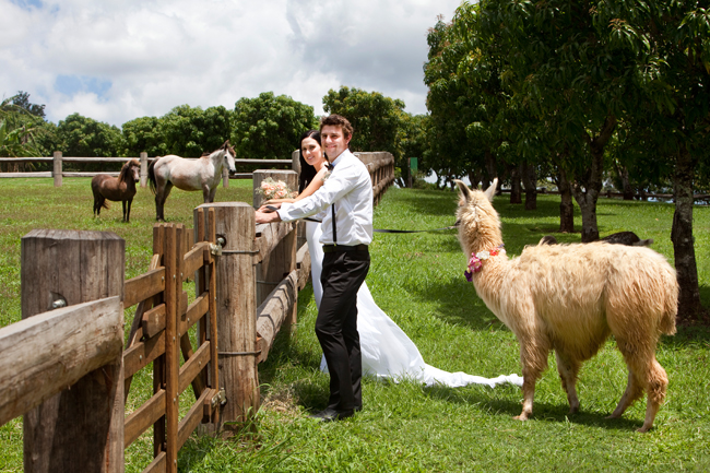 Just Married On The Farm