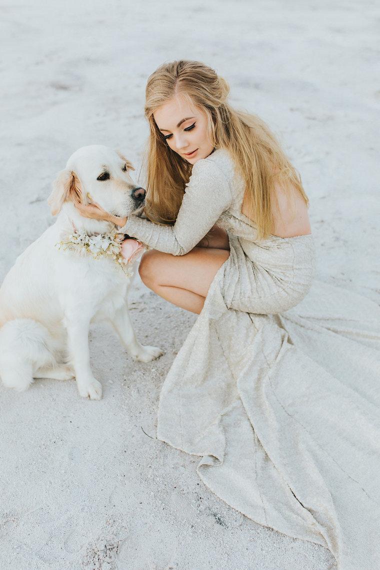 dog at wedding _ labrador at wedding