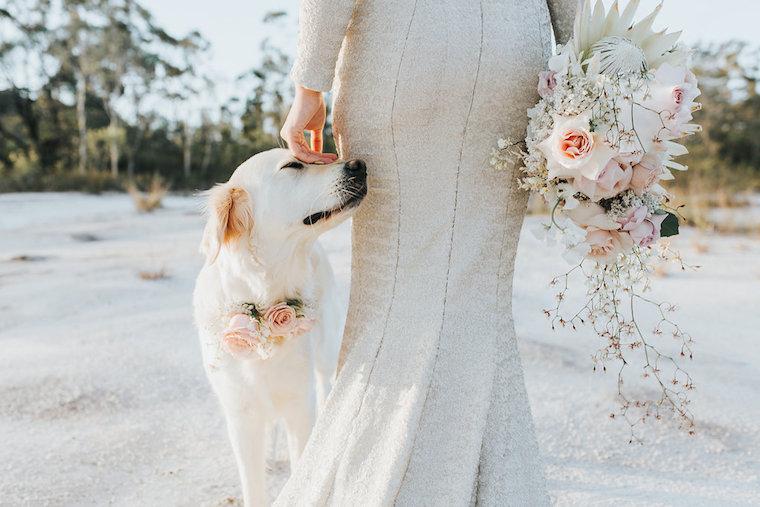 Unique bridal style _ metalic bridal gown _ Noosa bride